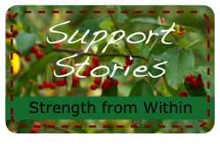 SupportStoriesButton