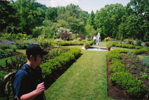 Harry & rose garden