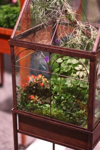 PhillyFlowerShowContainer